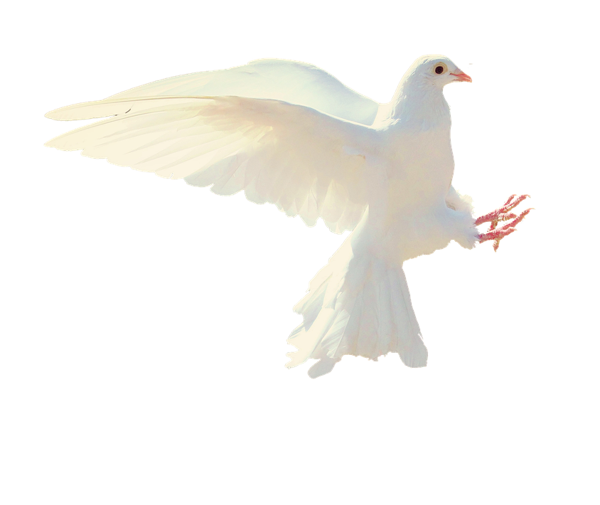 Benefits of the Baptism of the Holy Spirit